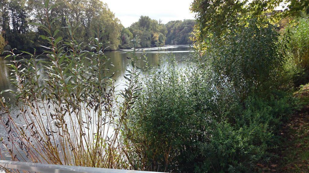 Ruhe am Fluss