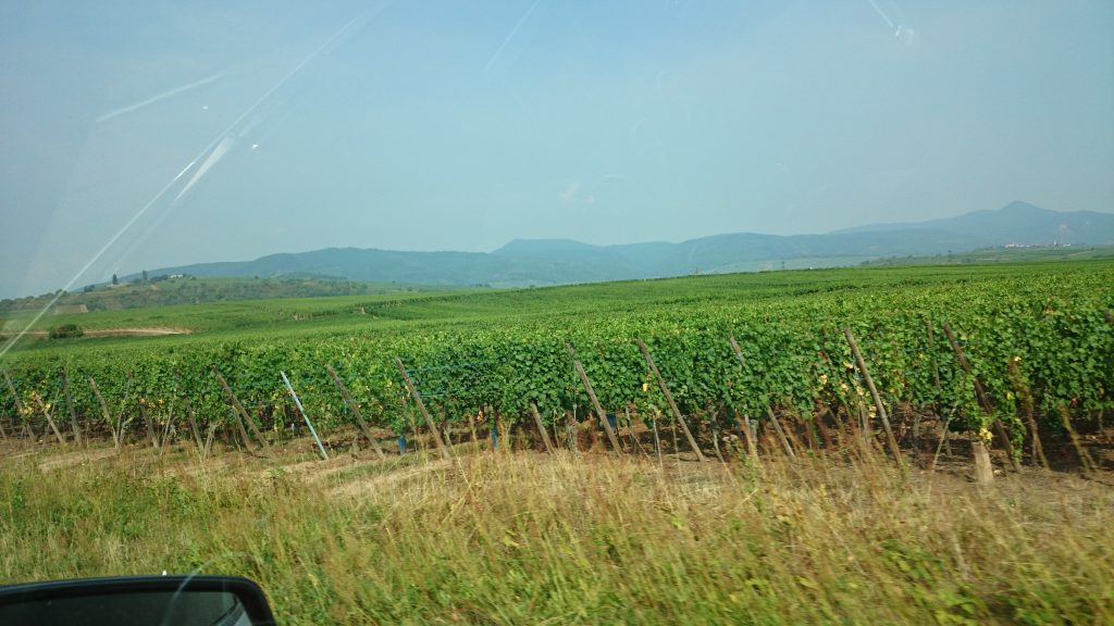 August 2015 Alsace - Trip 020