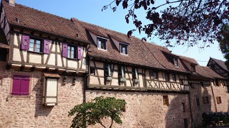 August 2015 Alsace - Trip 062