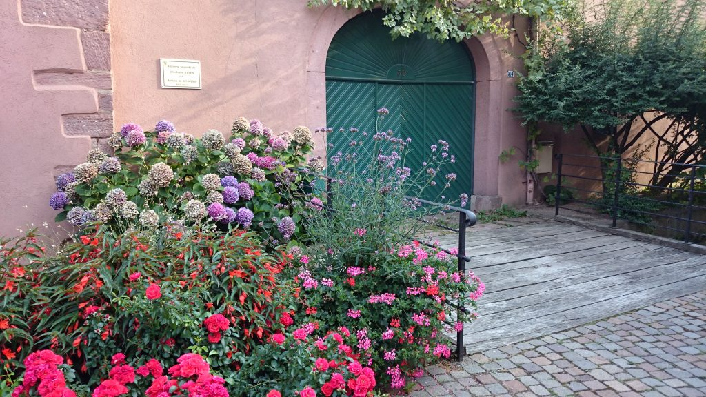 August 2015 Alsace - Trip 100